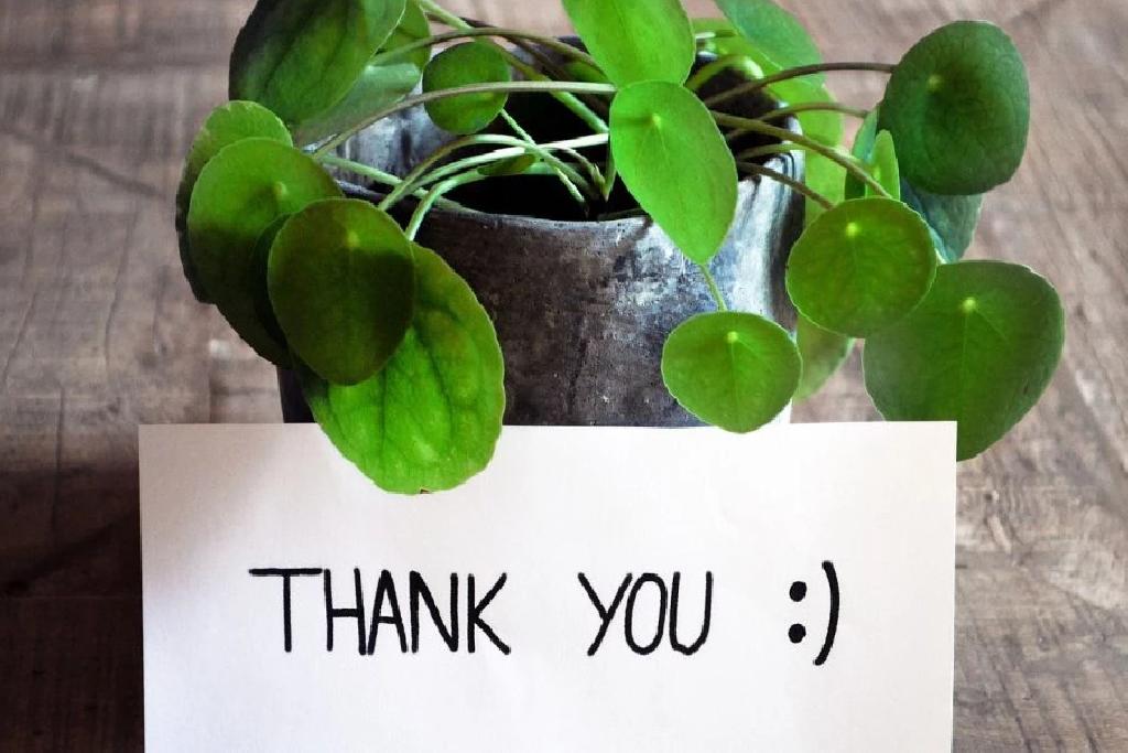 Praktykowanie wdzięczności i techniki wzmacniające wdzięczność